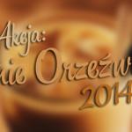 Akcja: Letnie Orzeźwienie 2014